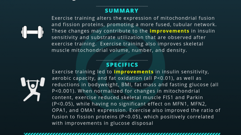 Exercise Training Remodels Skeletal Muscle Mitochondria