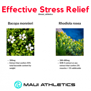 Supplements for Stress and Anxiety